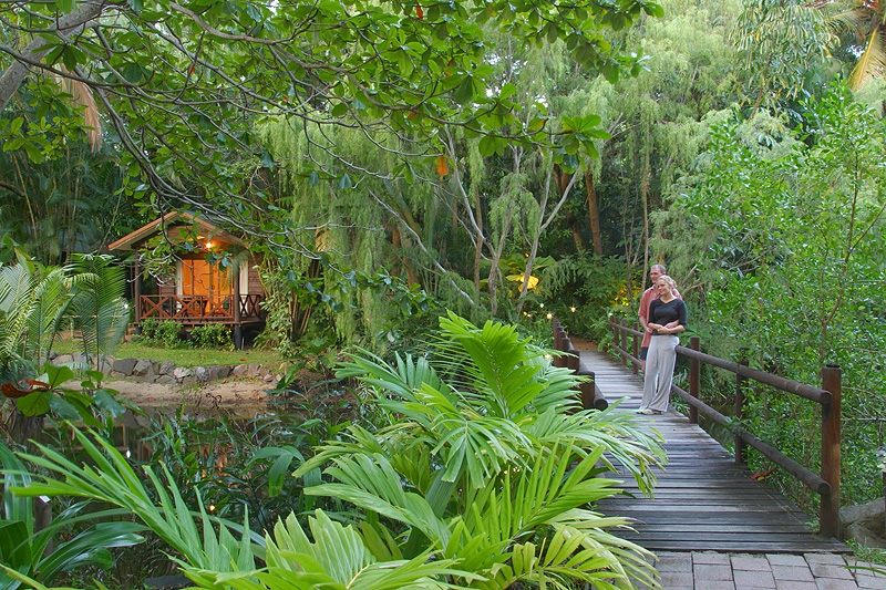 hm-pkg---rainforest-lagoon-bungalow